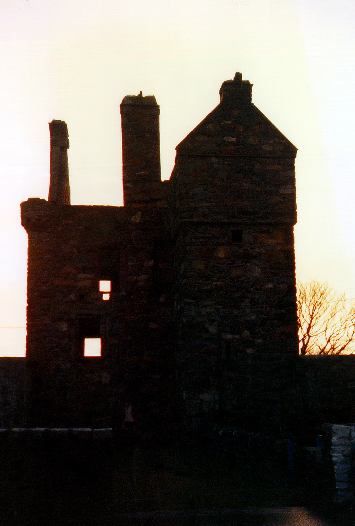 Carsluith Castle, a compact and attractive old ruinous tower house of the Brown family, near Creetown in Galloway in southwest Scotland.