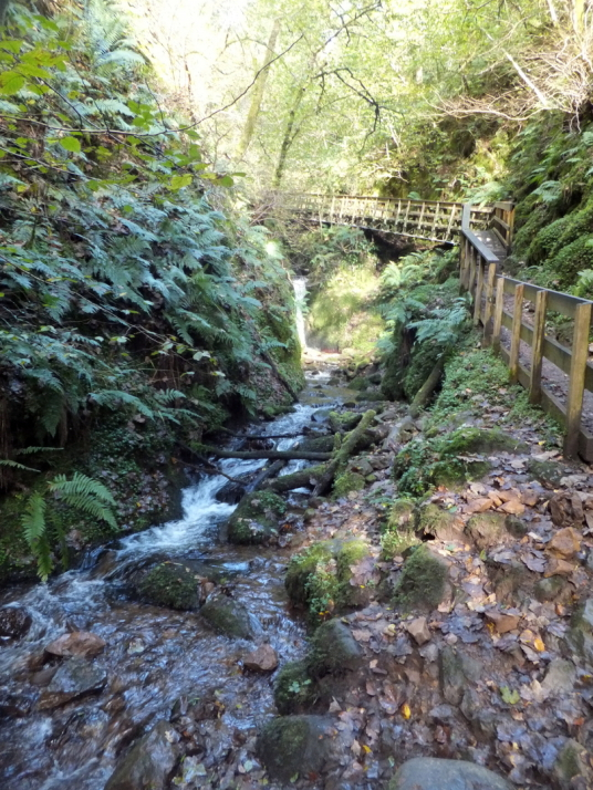 Dollar Glen, a sylvan wooded gorge through which a path leads by the side of a burn with waterfalls to the picturesque Castle Campbell, a handsome ruinous old stronghold of the Campbells of Argyll.