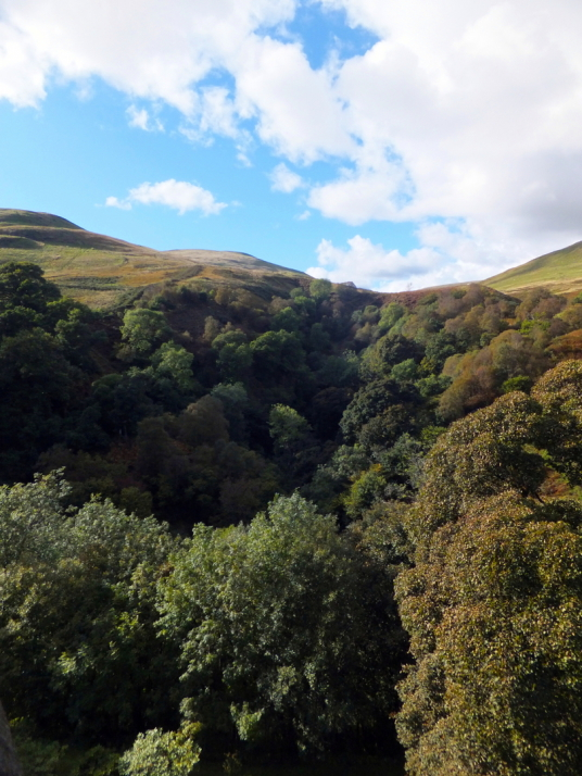View from the battlements, looking north, of Castle Campbell, a handsome ruinous castle,  with many rooms to explore and superb views and gardens, of the great Campbell clan of Argyll in a lovely location up through the sylvan Dollar Glen.