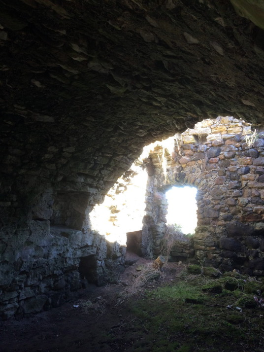 Vaulted chamber, Saltcoats Castle, a scenic, ruinous and overgrown old castle of the Livingstone family, near the pretty village of Gullane in East Lothian in southeast Scotland.