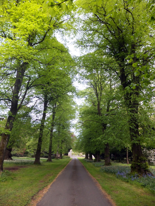 Avenue of trees, Newliston House is a fine Adam mansion, set in landscaped grounds near Kirkliston in West Lothian in central Scotland, and held by the Dundas family, the Dalrymples of Stair, and then the Hog family.