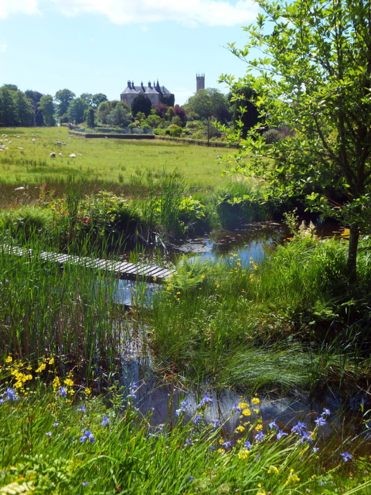 Water Garden, Ardmaddy Castle and Gardens, an attractive mansion on a rock in a beautiful spot with the fantastic walled garden, water garden and wooded grounds, near Oban in Argyll.